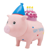birthday, piggybank, moneybank, novelty, gift