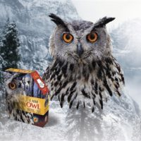 jigsaw, puzzle, owl, harry potter,