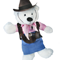 teddy bear, costume, cowgirl, cowboy, bear planet,