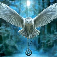 jigsaw, puzzle, therapy, soft drinks, educa, gamescrusade, hedwig