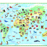 jigsaw, puzzle, learning, information, animals, harrogate