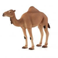 desert, animal, figurine, creative play, camel, hump