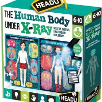 puzzle, science, human body, magic torch, leanring, fun