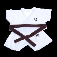 karate, mma, taekwondo, martial arts, dress your bear